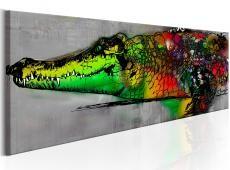 Kép - Colourful Beast