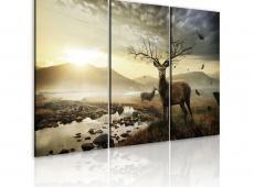 Kép - Deer with a tree-like antlers