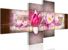 Kép - Delicate water lilies