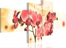 Kép - Dream of orchids - 4 pieces