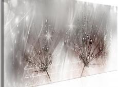 Kép - Drops of Dew (1 Part) Pink Narrow