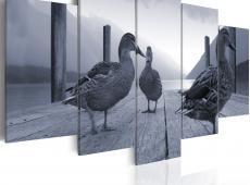 Kép - Ducks on a pier