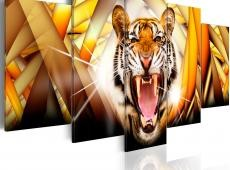 Kép - Energy of Tiger