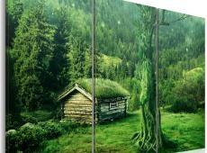 Kép - Erdei ökoszisztéma