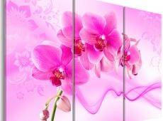 Kép - Ethereal orchid - pink