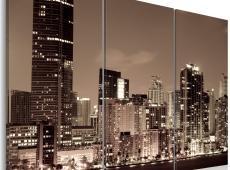 Kép - Evening in Miami