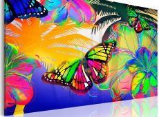 Kép - Exotic butterflies