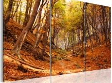 Kép - Fall gorge