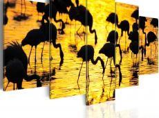 Kép - Flamingos by the sea