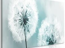 Kép - Fluffy Dandelions (1 Part) Blue Wide