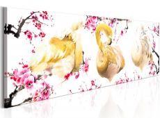 Kép - Golden Flamingoes