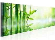 Kép - Green Bamboo