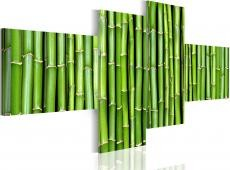 Kép - Green bamboo stalks