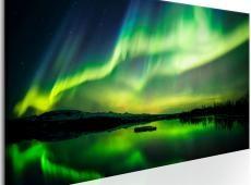 Kép - Green Sky
