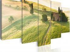 Kép - Green Tuscany
