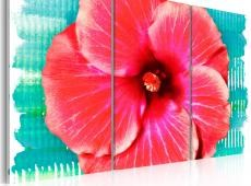 Kép - Hawaiian flower - triptych