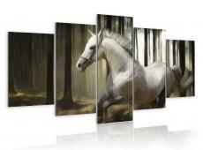 Kép - Horse running
