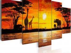 Kép - Hot Safari
