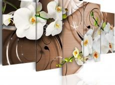 Kép - Ivory orchids