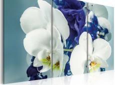 Kép - Képzeletbeli orchideák