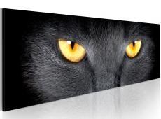 Kép - Look into my eyes...