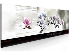 Kép - Magnolia ébredés