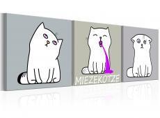 Kép - Miezekotze: Cat Trio