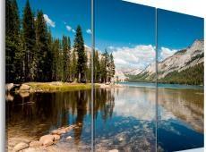Kép - Mountains, trees and pure lake