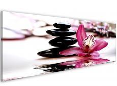 Kép - Orchid - a nyugalom oázisa