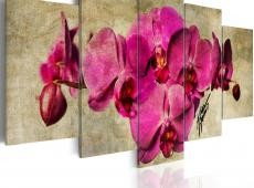 Kép - Orchids on canvas - 5 pieces