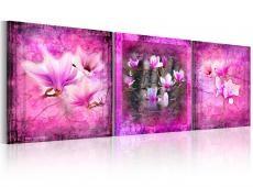 Kép - Pink magnolia flowers