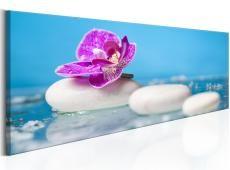 Kép - Pink Orchid and white Zen Stones