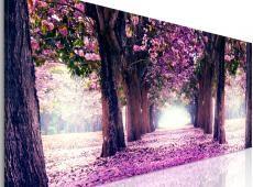 Kép - Purple Spring