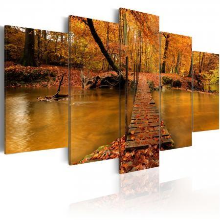Kép - Redness of autumn