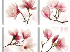 Kép - Romantic Pink