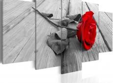 Kép - Rose on Wood (5 Parts) Wide Red