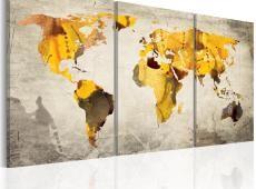 Kép - Sárga kontinensek