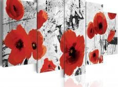 Kép - Scarlet flowers