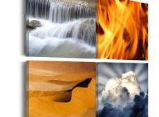 Kép - Sokszínűség a természet