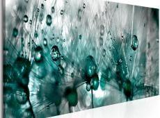 Kép - Sprinkled Dandelions