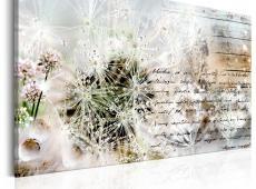 Kép - Starry Dandelions