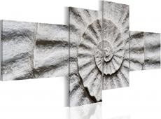 Kép - Stone shell