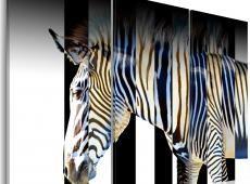 Kép - Stripes