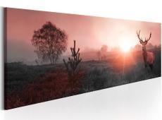 Kép - Sun on the Horizon