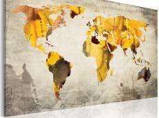 Kép - Sunny kontinensek