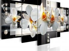 Kép - Sunny orchids