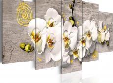 Kép - Sunny orchids - 5 pieces