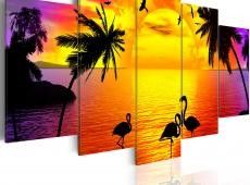 Kép - Sunset and Flamingos