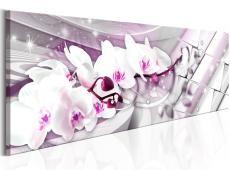 Kép - Sweet Orchids