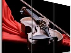 Kép - The sound of the violin
